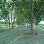 08-09-2014 Baraquinha-onderweg n PdAltar-PegodAltar 007