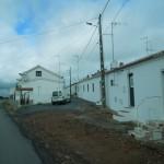 07-11-2014 Vogel CP-Castro Marim-Mina d S. Dom. en naarLuz 034