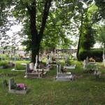 vakakantie Polen 2012 024