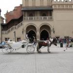 vakakantie Polen 2012 225