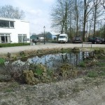 Ilse 08-04 en Maasbommel 13-04-2015 079