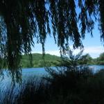 Rathenow, Aschersleben, Vienenburg en Duderstadt 26-30-06-2015 015