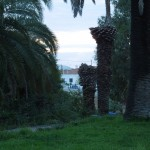 30-09-2015 CP Aguiar-onderweg Algarve+Mina do Lausal 018